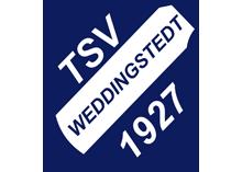 HSG-Handball Logo